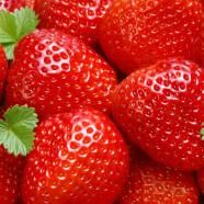 Het aardbeien seizoen is weer aangebroken